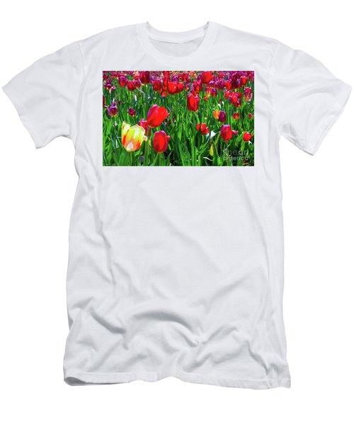 Tulip Garden Men's T-Shirt (Athletic Fit)