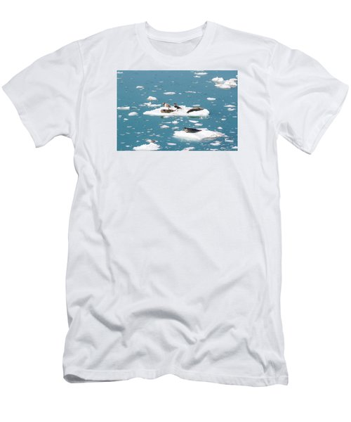 Five Habor Seals On Ice Flows Men's T-Shirt (Slim Fit) by Allan Levin