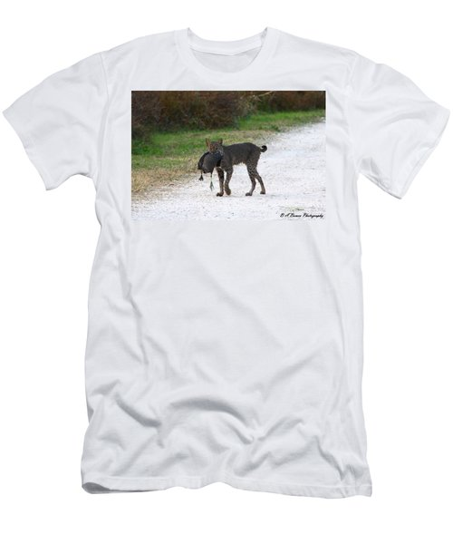 Florida Bobcat Catches An Evening Snack Men's T-Shirt (Athletic Fit)