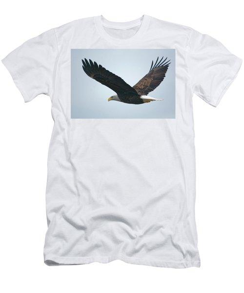 Flying Bald Eagle Men's T-Shirt (Athletic Fit)
