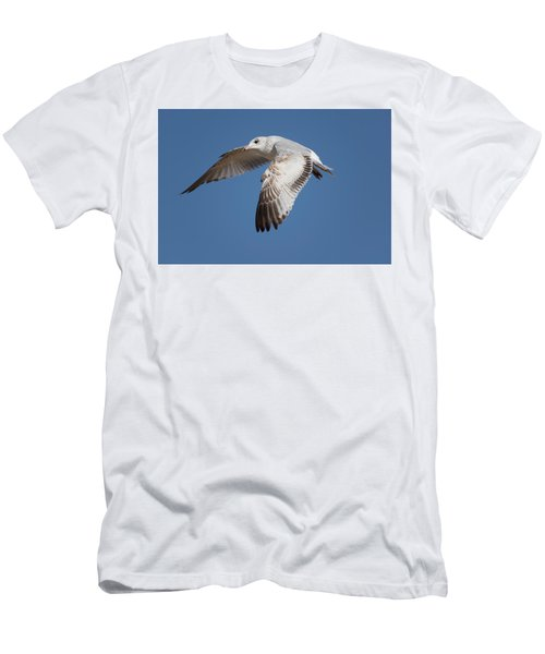 Flying Seagull Men's T-Shirt (Athletic Fit)
