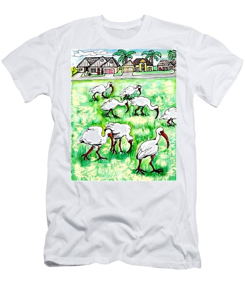 Foraging Ibis Men's T-Shirt (Athletic Fit)