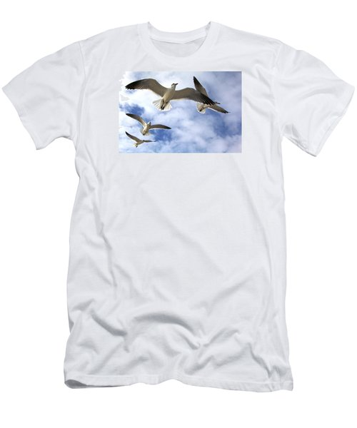 Four Gulls Men's T-Shirt (Slim Fit) by Robert Och