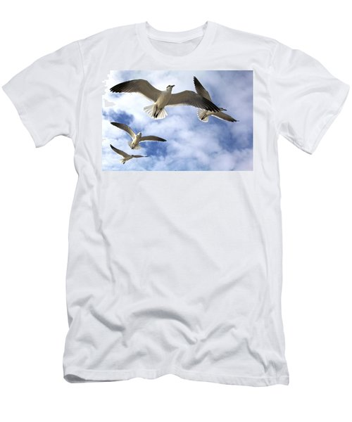 Four Gulls Men's T-Shirt (Athletic Fit)