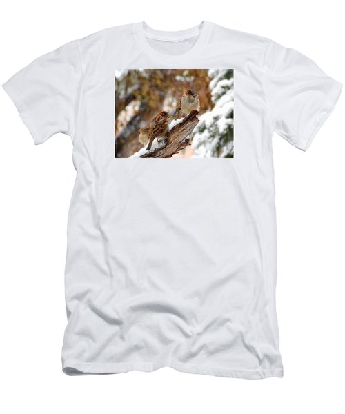 Four Sparrows Men's T-Shirt (Slim Fit) by Deborah Moen