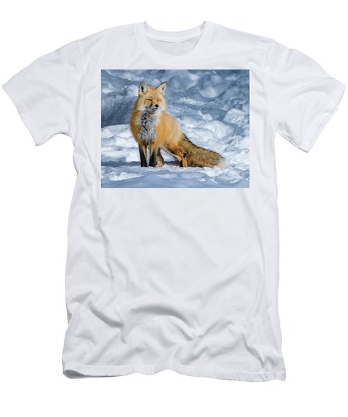 Fox On A Winter Afternoon Men's T-Shirt (Athletic Fit)