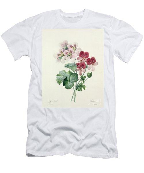 Geranium Variety Men's T-Shirt (Athletic Fit)