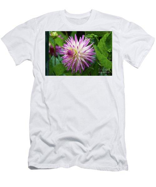 Glenbank Twinkle Dahlia 2 Men's T-Shirt (Athletic Fit)