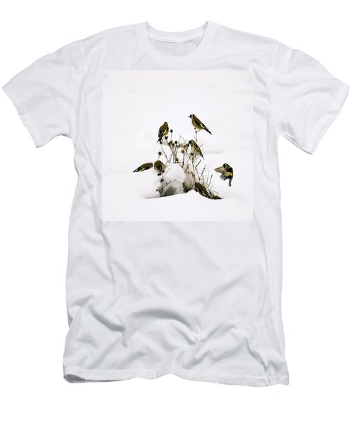 Gold Finches In Snow Men's T-Shirt (Athletic Fit)