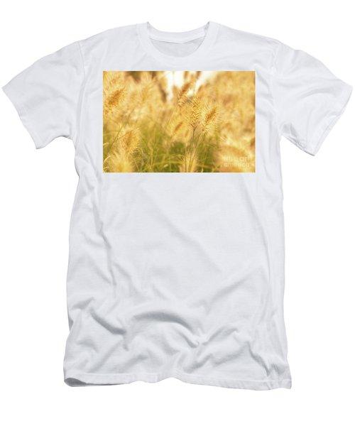 Golden Grass Men's T-Shirt (Athletic Fit)