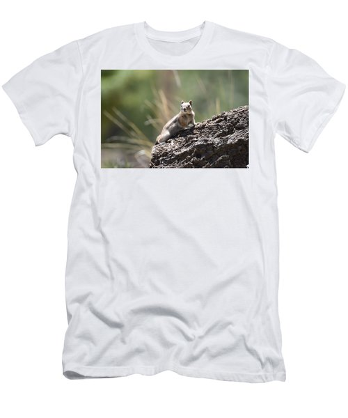 Men's T-Shirt (Athletic Fit) featuring the photograph Golden Mantled Ground Squirrel by Margarethe Binkley