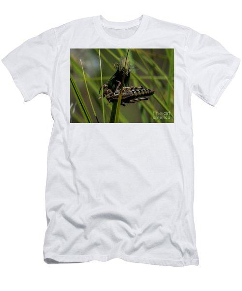 Grasshopper 2 Men's T-Shirt (Athletic Fit)