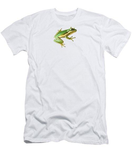 Green Tree Frog Men's T-Shirt (Slim Fit) by Sarah Batalka
