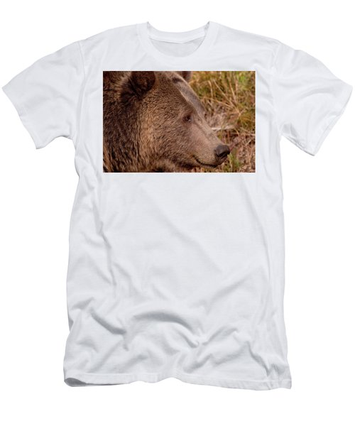 Grizzly Profile Men's T-Shirt (Athletic Fit)