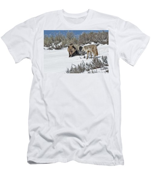 Grizzly With Coyote Men's T-Shirt (Athletic Fit)