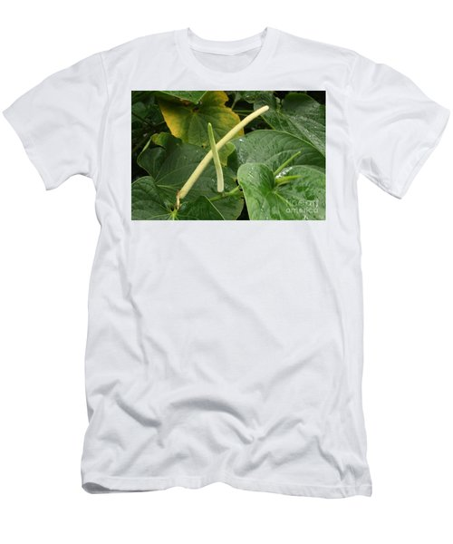 Hawaiian Kava Men's T-Shirt (Athletic Fit)