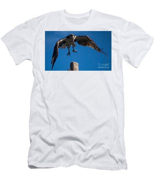 Hawk Taking Off Men's T-Shirt (Athletic Fit)