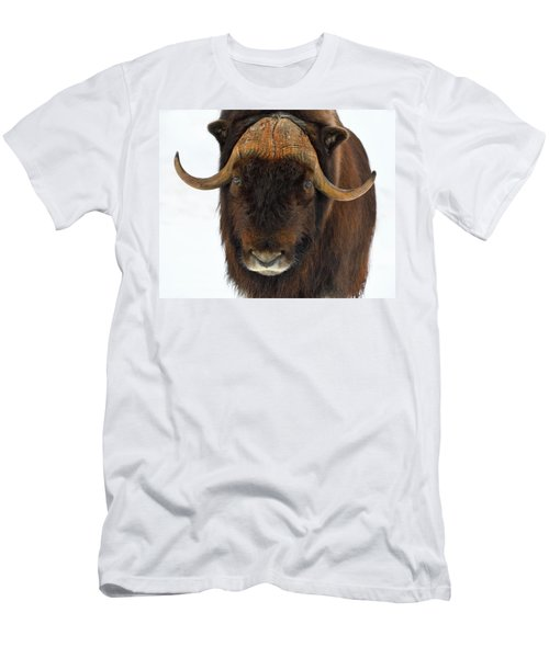 Men's T-Shirt (Slim Fit) featuring the photograph Head Butt by Tony Beck