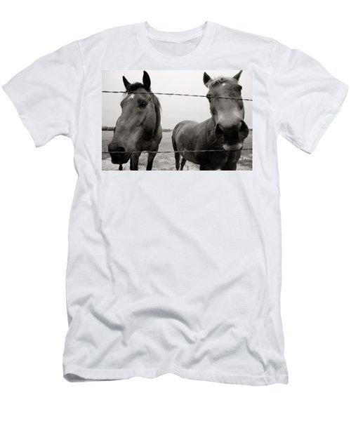 Hello Horses Men's T-Shirt (Slim Fit) by Toni Hopper
