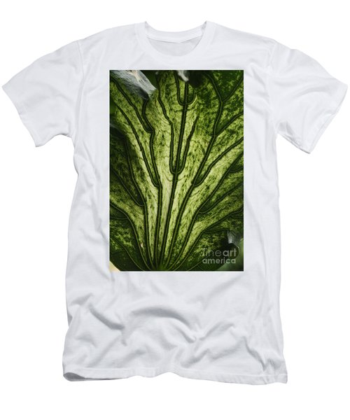 Hibiscus Tiliaceus Variegata 2 Men's T-Shirt (Athletic Fit)