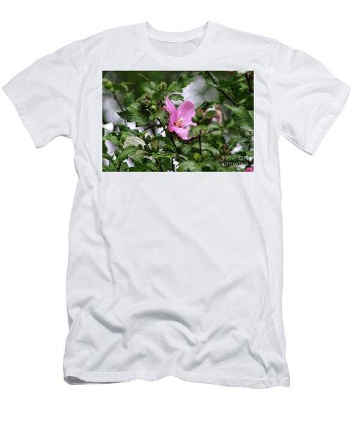 Hide And Seek Men's T-Shirt (Slim Fit) by Joan Bertucci