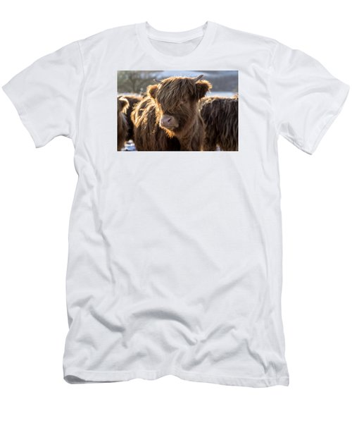 Highland Baby Coo Men's T-Shirt (Slim Fit) by Jeremy Lavender Photography