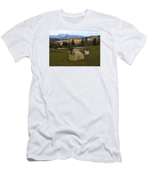 Men's T-Shirt (Slim Fit) featuring the photograph Hill Sheep by RKAB Works