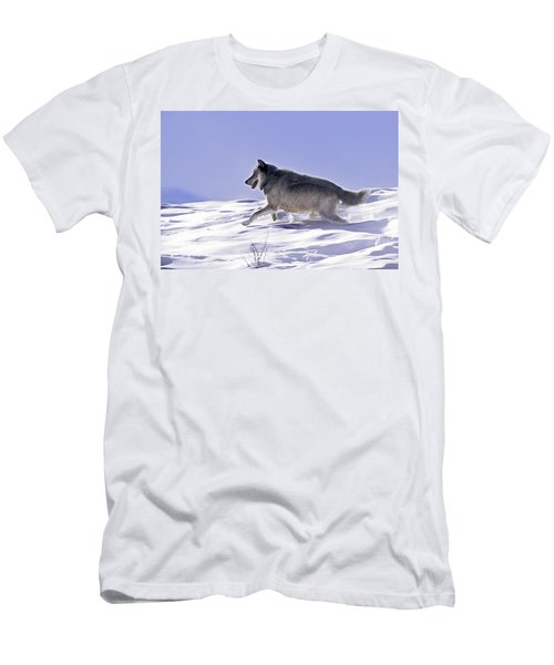 His Majesty Wolf 21m Men's T-Shirt (Athletic Fit)