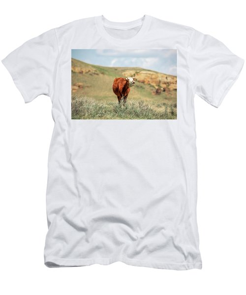 Hollerin' Hereford Men's T-Shirt (Athletic Fit)