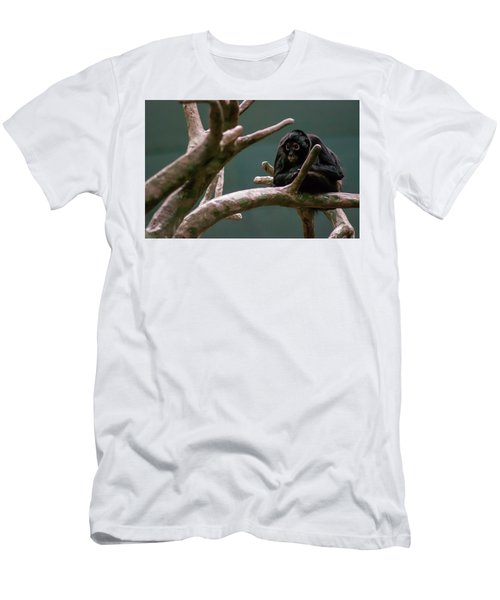 Home On The Limb Men's T-Shirt (Athletic Fit)