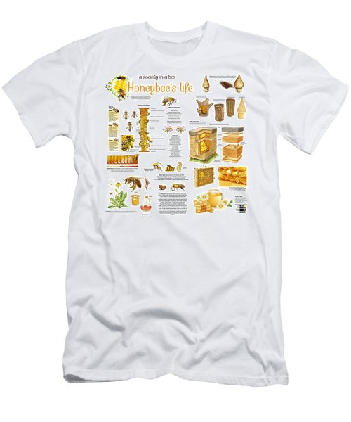 Men's T-Shirt (Slim Fit) featuring the drawing Honey Bees Infographic by Gina Dsgn