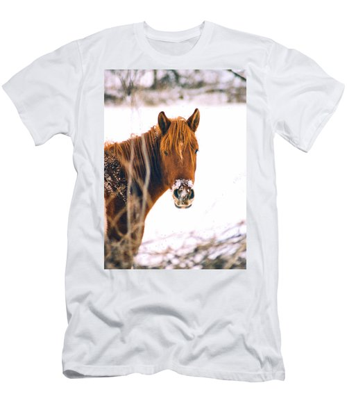 Horse In Winter Men's T-Shirt (Athletic Fit)