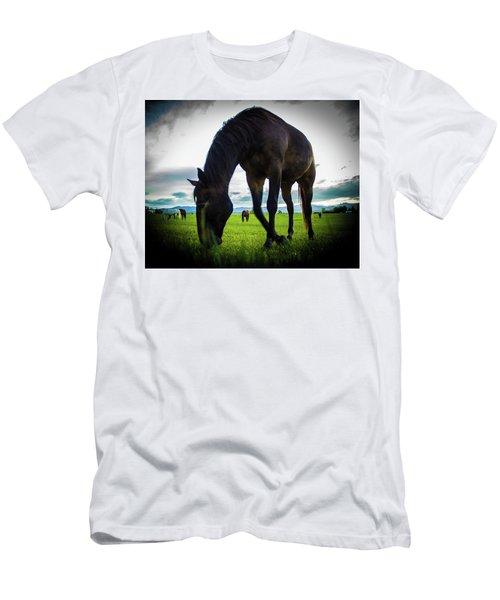 Horse Time Men's T-Shirt (Athletic Fit)