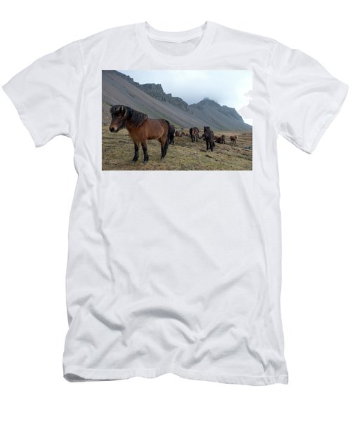 Men's T-Shirt (Athletic Fit) featuring the photograph Horses Near Vestrahorn Mountain, Iceland by Dubi Roman
