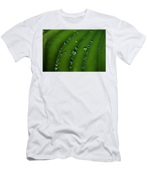 Hostas And Raindrops Men's T-Shirt (Athletic Fit)