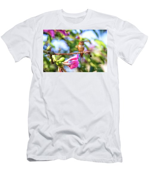 Humming Bird Pink Flowers Men's T-Shirt (Athletic Fit)
