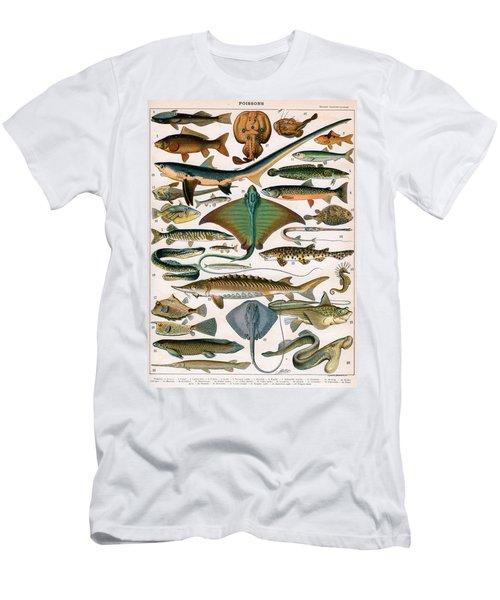Illustration Of Ocean Fish Men's T-Shirt (Athletic Fit)
