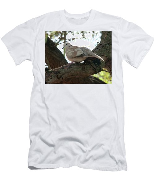 Men's T-Shirt (Athletic Fit) featuring the photograph Indian Ringneck Dove by Chris Flees