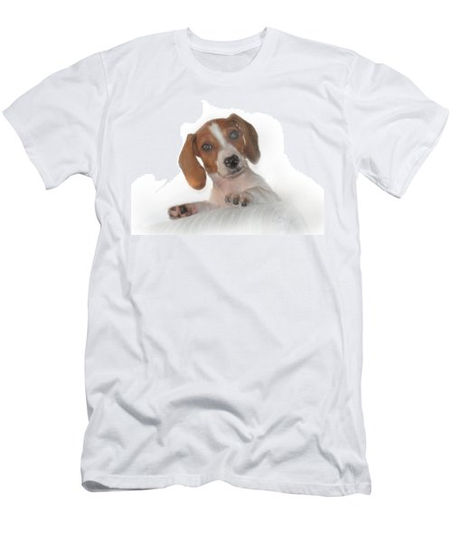 Men's T-Shirt (Slim Fit) featuring the photograph Inquisitive Dachshund by David and Carol Kelly
