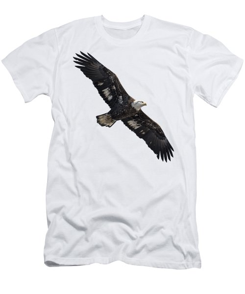 Men's T-Shirt (Slim Fit) featuring the photograph Isolated Juvenile American Bald Eagle 2016-1 by Thomas Young