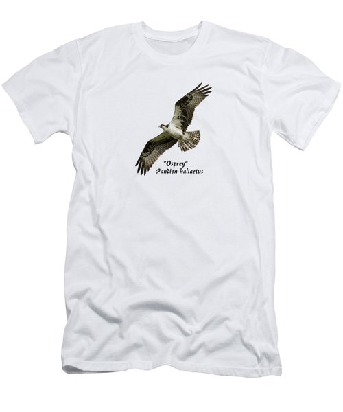 Isolated Osprey 2017-1 Men's T-Shirt (Slim Fit)