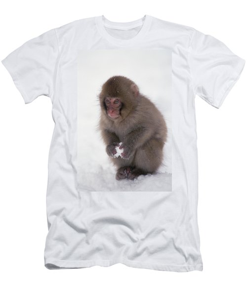 Japanese Macaque Macaca Fuscata Baby Men's T-Shirt (Athletic Fit)