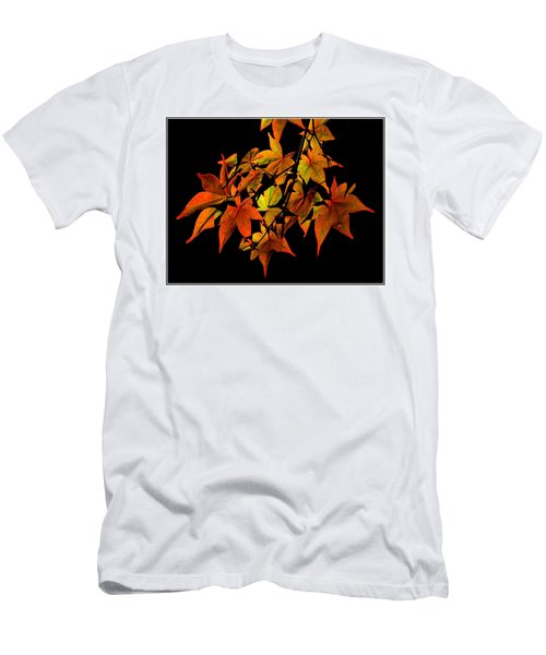 Japanese Maple Men's T-Shirt (Athletic Fit)