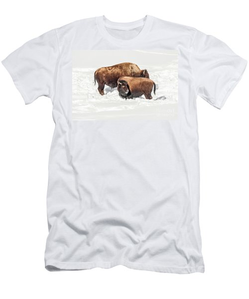 Men's T-Shirt (Athletic Fit) featuring the photograph Juvenile Bison With Adult Bison by Sue Smith