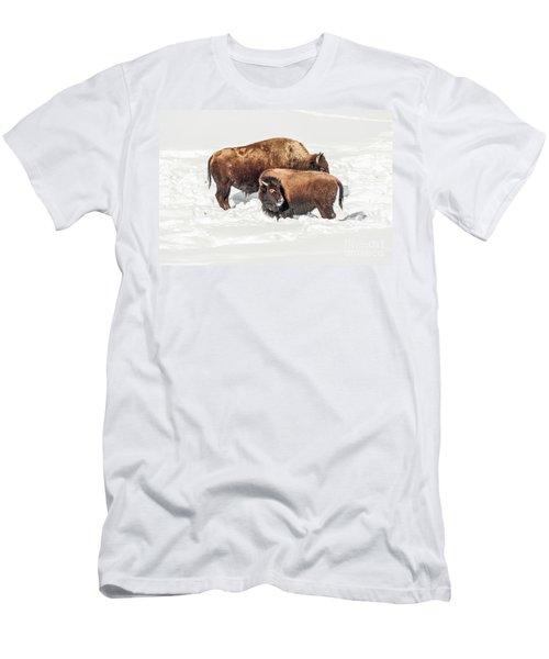 Juvenile Bison With Adult Bison Men's T-Shirt (Athletic Fit)
