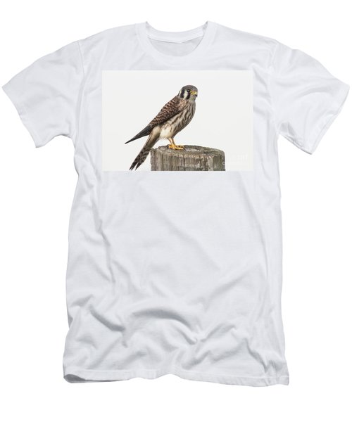 Kestrel Portrait Men's T-Shirt (Slim Fit) by Robert Frederick