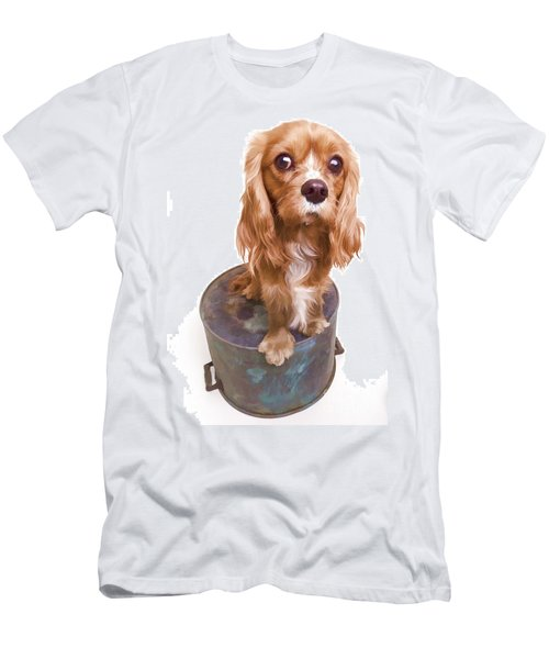 King Charles Spaniel Puppy Men's T-Shirt (Athletic Fit)