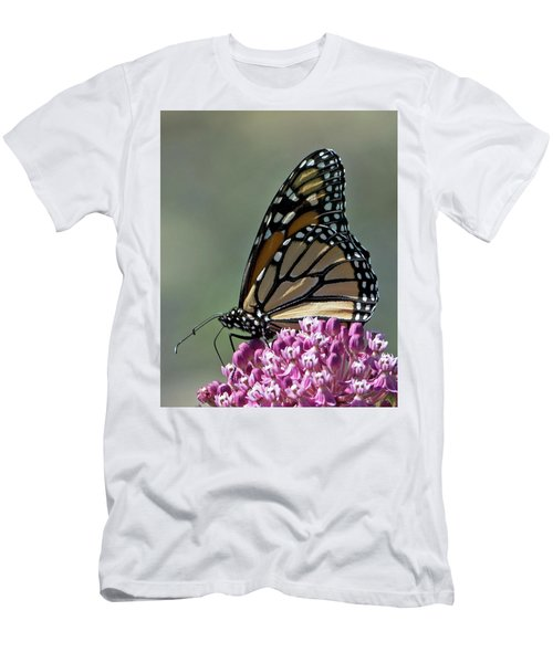 King Of The Butterflies Men's T-Shirt (Athletic Fit)
