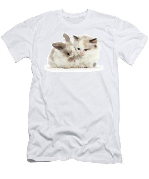 Kitten Cute Men's T-Shirt (Athletic Fit)