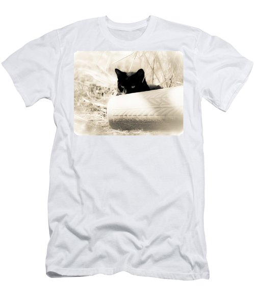 Kitty Stalks In Sepia Men's T-Shirt (Athletic Fit)
